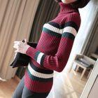Striped Turtleneck Rib Knit Top 1596