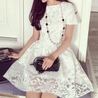 Lace Short-Sleeve A-Line Dress 1596