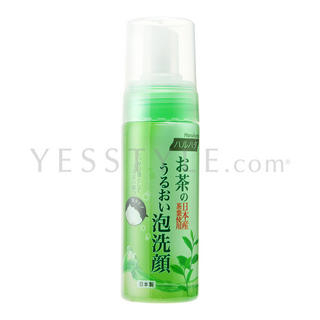 Green Tea Brightening Cleansing Mousse