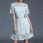 Short-Sleeve Lace Dress 1596