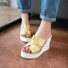 Platform Wedge Slide Sandals Silver - 39 от YesStyle.com INT