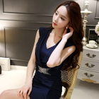 Shirred Sheath Dress 1596