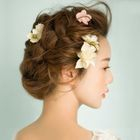 Set of 5: Flower Hair Clip 1596