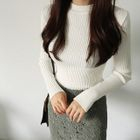 Crew-Neck Long-Sleeve Slim-Fit Ribbed Knit Top 1596