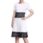 Lace Panel Short-Sleeve A-Line Dress 1596