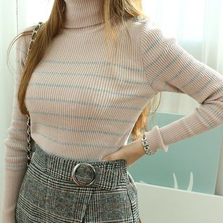 Stripe Turtle-Neck Ribbed Knit Top 1055500980