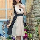 Sleeveless Color Block A-line Dress 1596