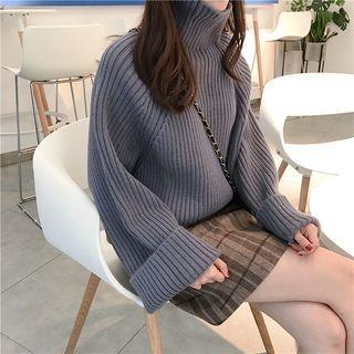 Ribbed Long-Sleeve Knit Top 1063927505
