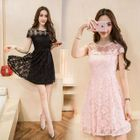 Embroidered Mesh Panel Short-Sleeve Lace Dress 1596