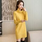 Long-Sleeve Turtleneck Sweater Dress 1596