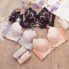 Set: Lace Panel Bra + Panties 1596