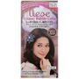 Kao - Liese Creamy Bubble Hair Color (Raspberry Brown) 1 set 1596