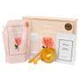 Glow Luminous Flower XL Modeling Mask Rose 6 pcs