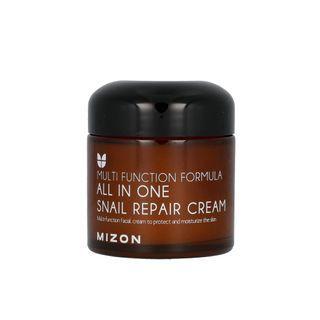 MIZON - All In One Snail Repair Cream 75ml  75ml