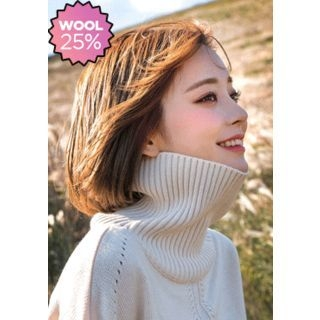 Ribbed Turtle-Neck Sweater 1067941812