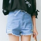 Floral Embroidery Denim Shorts 1596