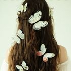 Set of 12: Butterfly Hair Clip 1596